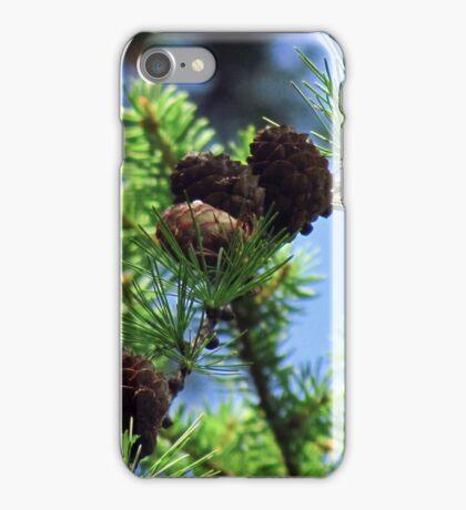 Pinecones iPhone Case/Skin