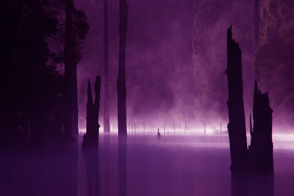 Lake Elizabeth by Bruce Kirby