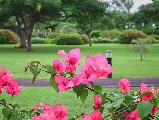 Emancipation Park, Jamaica by vaughnparkes