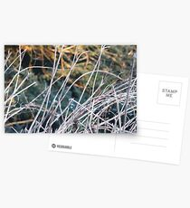 Abstract Steep Postcards
