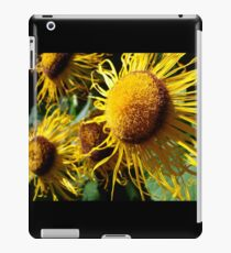 Sunflowers in Bloom - Shee Nature Photography iPad Case/Skin