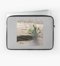 Princess of the Night - Blooming against Urban Wall Laptop Sleeve