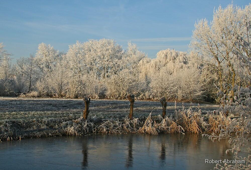 Freezing Mist by Robert Abraham
