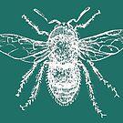 Bee (Aqua) by MissElaineous Designs