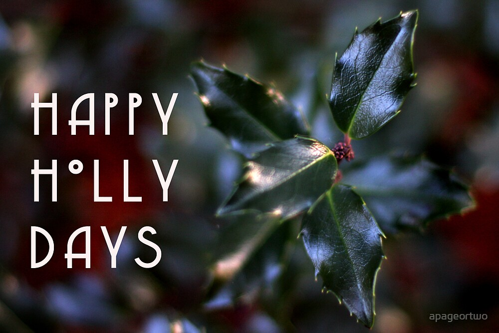 happy holly days by apageortwo
