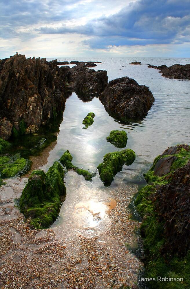 Devon Rock Pools by James Robinson