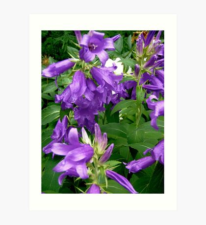Purple flowers - All products Art Print