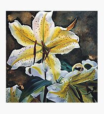 Lily Frenzy Photographic Print