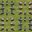 Age of Empires Elephants by AK Thaysen