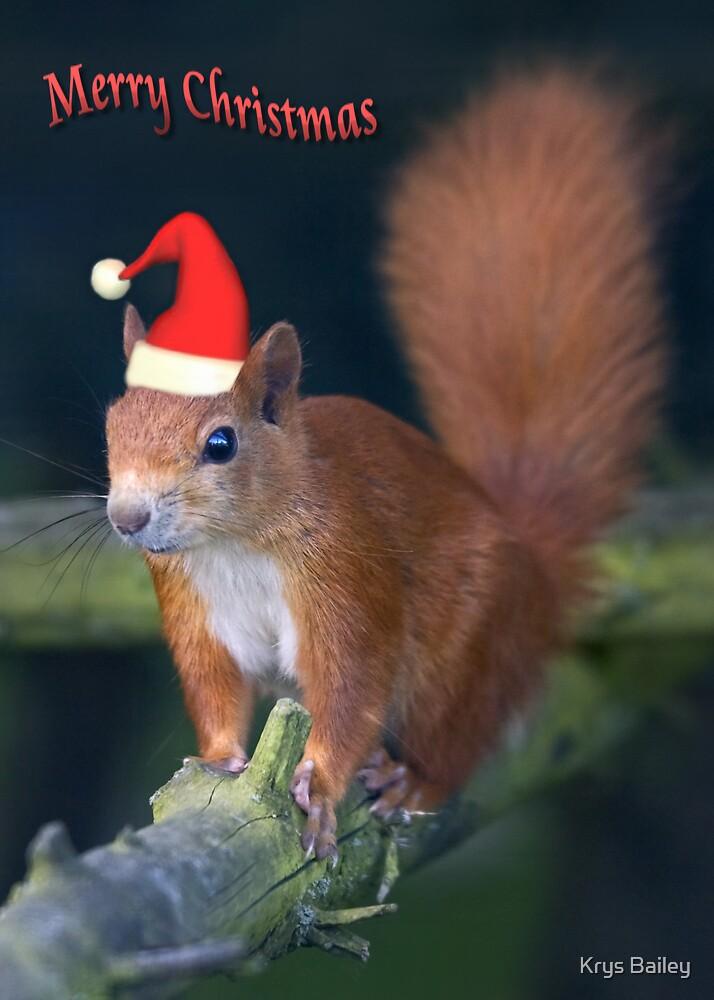 Santa Squirrel by Krys Bailey
