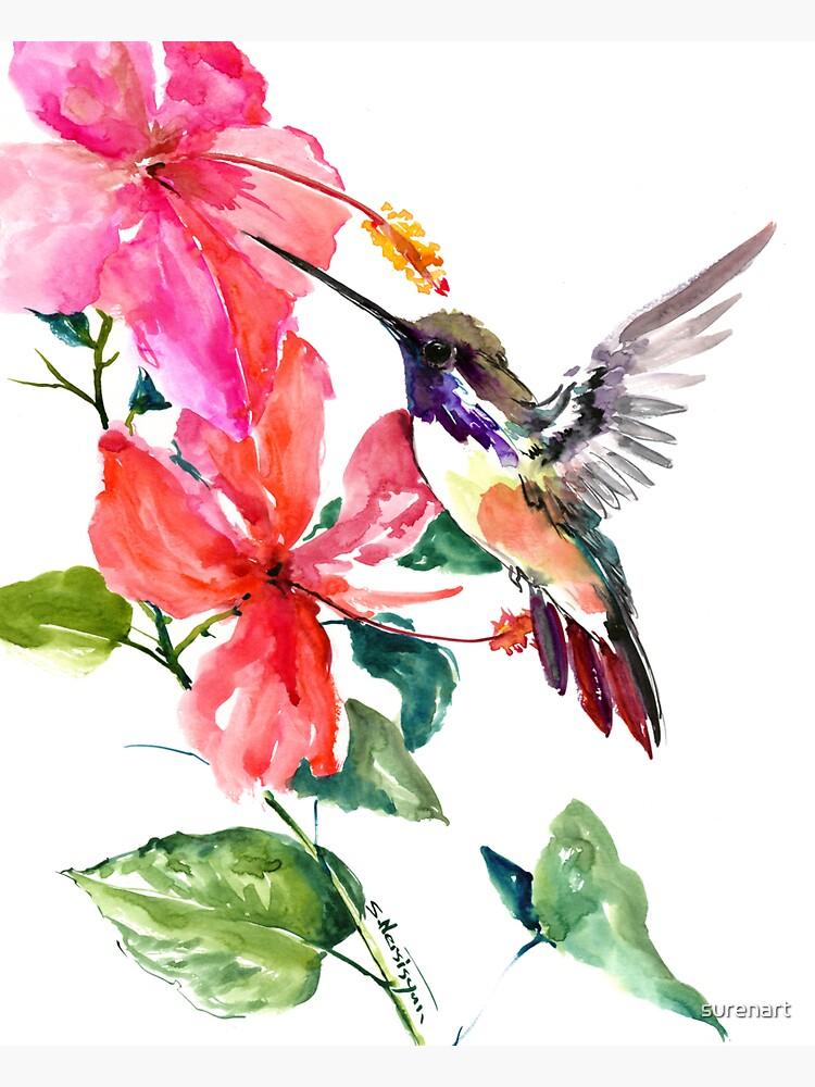 Colibrí y flores de hibisco de surenart