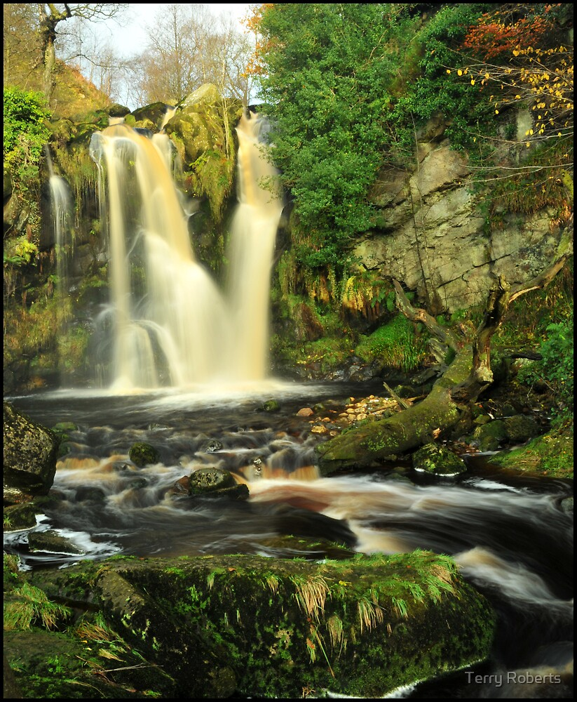 Waterfall, Wharefdale. by Terry Roberts