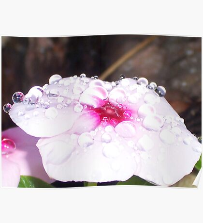 Pillow Top Droplets Poster
