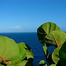 Guadeloupe 4 by mindfulmimi
