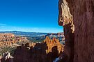 Down in The Canyon, Bryce Canyon by photosbyflood