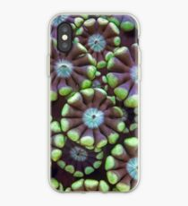 Alveopora coral iPhone Case