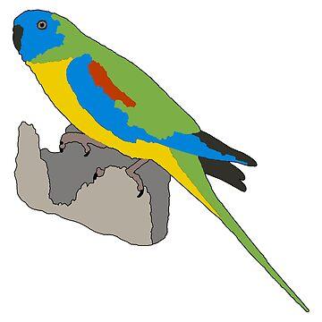 Turquoise Parrot by daniel-venema