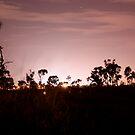 Perpetual Purple Dawn by The Mattmosphere