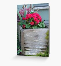 Flowers in a Box Greeting Card