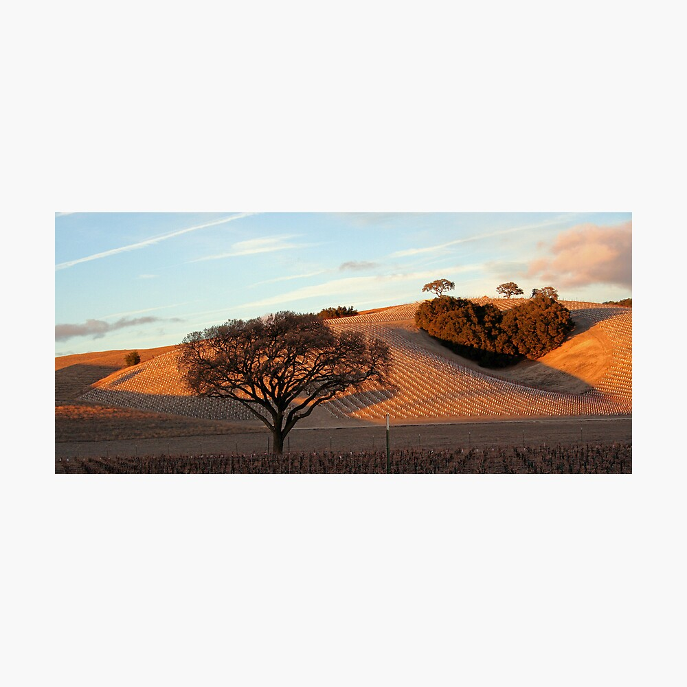 Heart Hill Photographic Print
