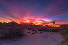 Joshua Tree Sunset Looking Towards Hidden Valley by photosbyflood