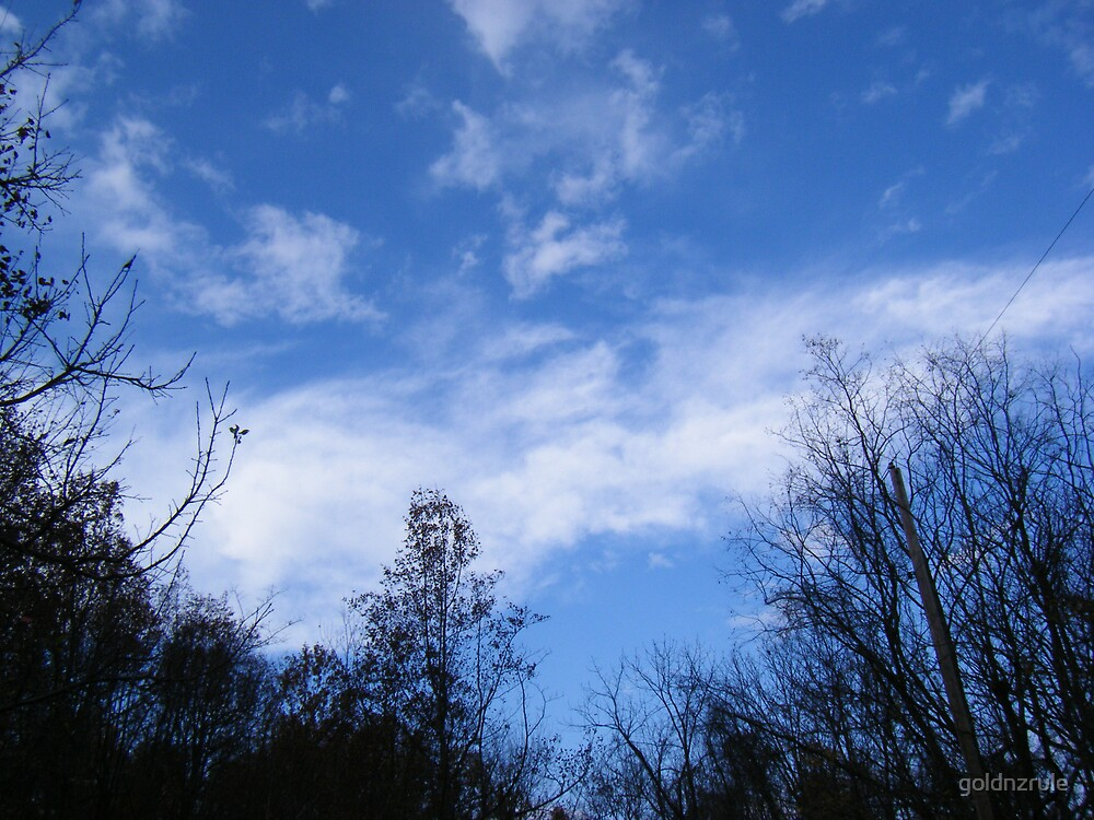 November Morning by goldnzrule