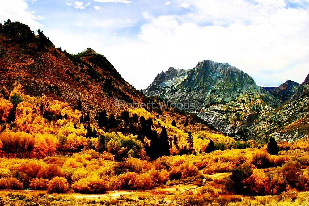 Mountain Vista in Fall Color by Robert Woods