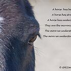 For the Love Of A Horse by Gill Langridge