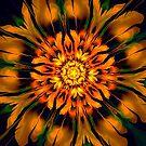 Flower Power Kaleidoscope by Barbara A Lane
