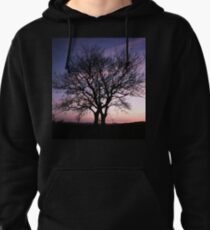 Two Trees embracing Pullover Hoodie