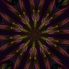 Purple Power Kaleidoscope by Barbara A Lane