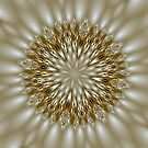 Diamond Jewels Kaleidoscope by Barbara A Lane