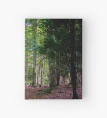 Into the woods Hardcover Journal