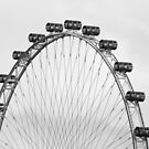 The Wheel by Paul Campbell  Photography