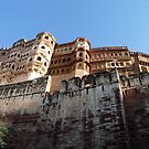 Mehrangarh Fort overlooking Jodhpur India by Bev Pascoe