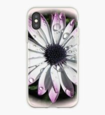 Raindrops on Cape Daisy - Vignette iPhone Case