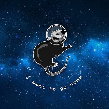 Space Possum - Funny Introvert Anxiety Outer Space Design by boypilot