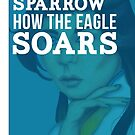 How The Eagle Soars by Briana  G.