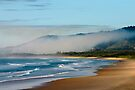 Morning at Shellys Beach, From Look At Me Now Head land  by Normf