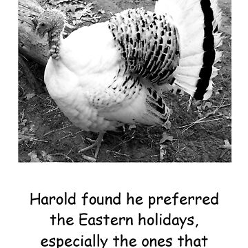 Harold the Turkey by fairygirl