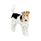 Wire Hair Fox Terrier by Louisa Houchen
