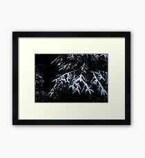 Winter Dark Framed Print