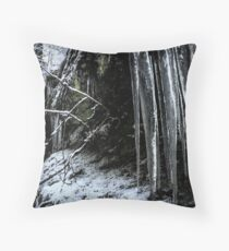 Winter's Tears III Throw Pillow