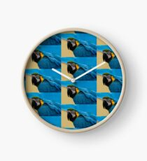 Blue-and-Gold Macaw Parrot Clock