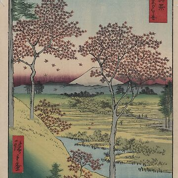 Sunset Hill, Meguro in the eastern capitol - - Japanese pre 1915 Woodblock Print by ashburg