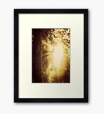 Early Morning II Framed Print