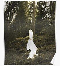 Winter's Bride Poster