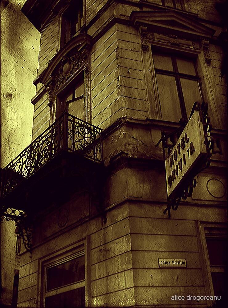 destination nowhere by alice drogoreanu
