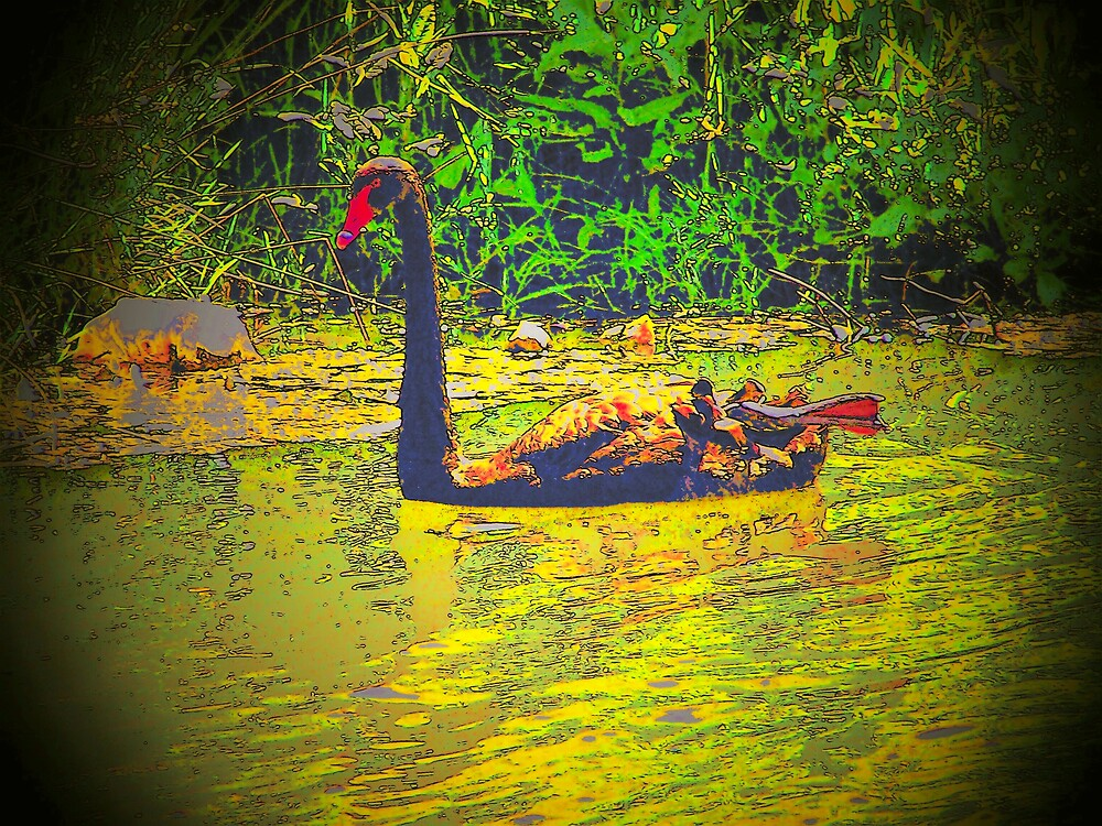 black swan traped in time by rosswilliams