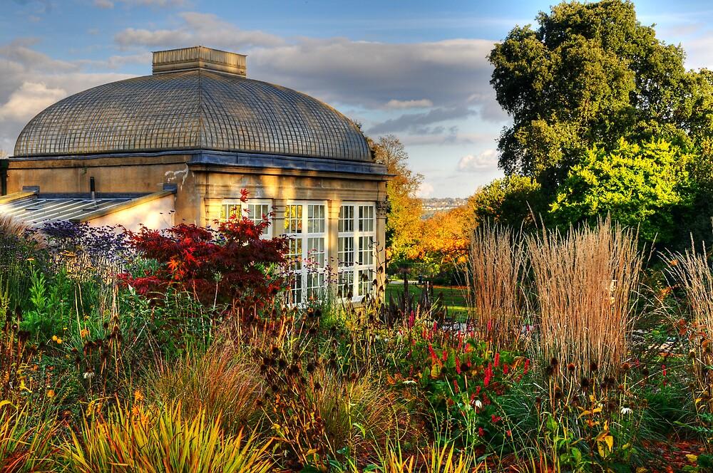 Botanical Gardens by Simon Hughes